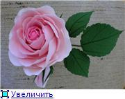 Цветы ручной работы из полимерной глины B4bba6b86e69t