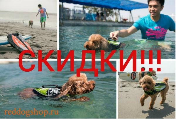 Интернет-магазин Red Dog- только качественные товары для собак! - Страница 4 6a7eba79ee9c