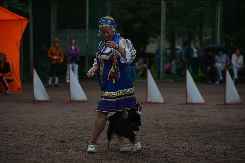 Танцы с собаками - Страница 3 F82e57578120