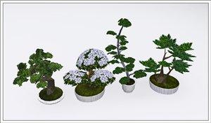 Цветы - Страница 2 36752239e8c2