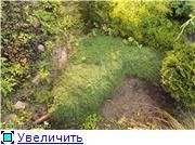 Cад Людмилы Ивановой из черкасс E81c3324f82at