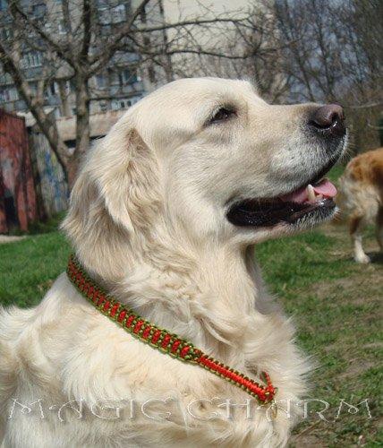 MAGIC CHARM - обереги, ошейники, украшения, ринговки и другие аксессуары для  собак и кошек. 4f8a900cbb25