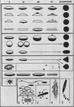 les différentes formes d'ovnis - d'après les témoignages 95908871ovni-forme-jpg