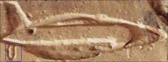 Le site d'Abydos I13