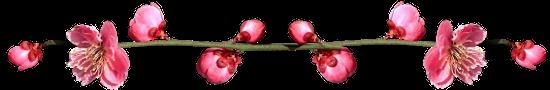 """Галерея выпускников Сакура """"Японский мотив"""" 73689807c1ef748a7658e2478248f873"""