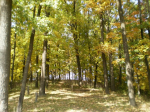 Осенний фотоконкурс 5358b9be1e1d6a23c67045afa42384d5