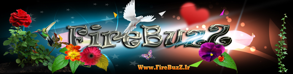 FireBuzZ TM Community
