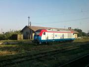 908 : Rosiori Nord - Turnu Magurele - Pagina 4 SPM_A0625