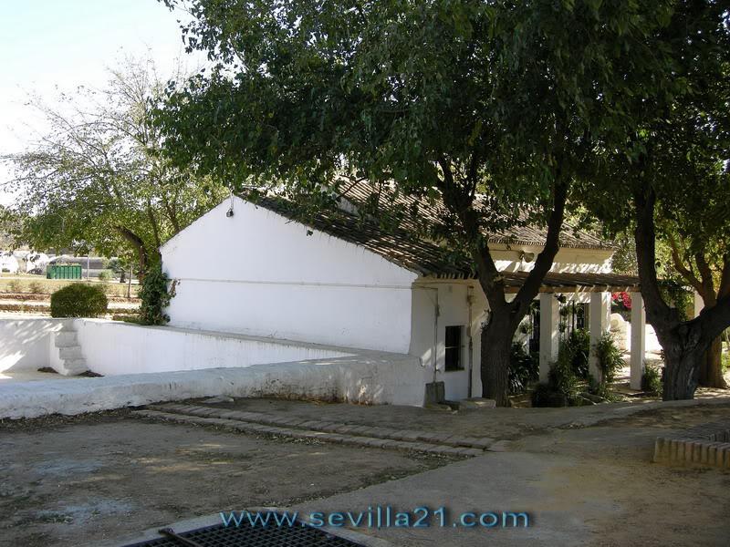 Parque de Miraflores (Sevilla). X20071115142700_DSCN7675_resize