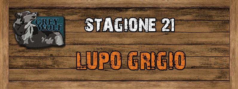 Lupo Grigio - ST. 21 Lupo_grigio