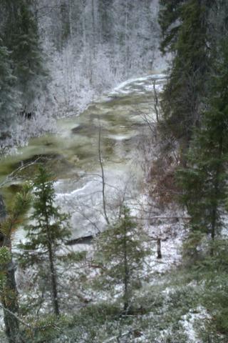 Зимний пейзаж IMAG0646