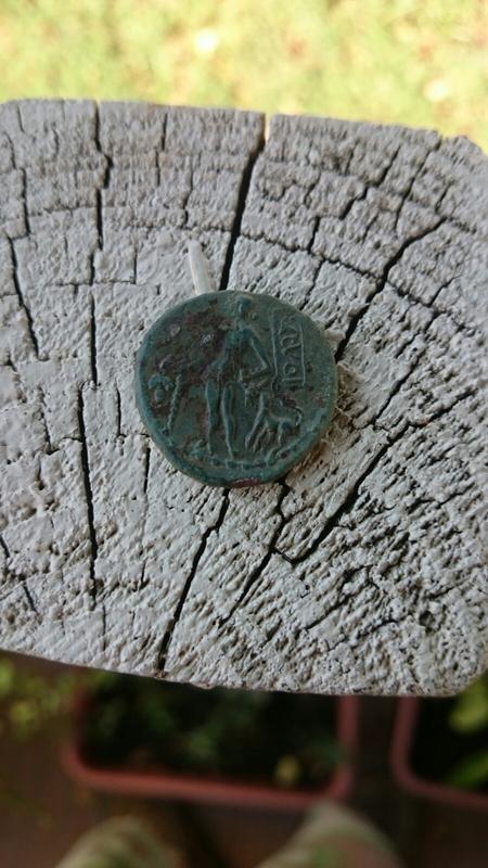Bronce de Siga. Periodo 49 al 33 a.C., Bocchus el Joven IMG-20171008-_WA0057