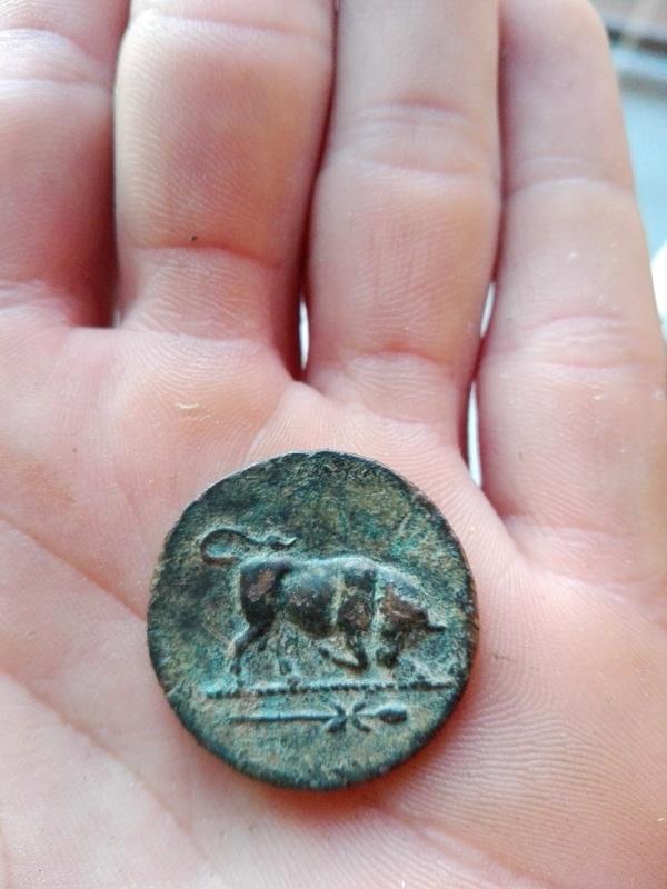 Bronce de Lucania, Thourioi. IMG_20170612_205850