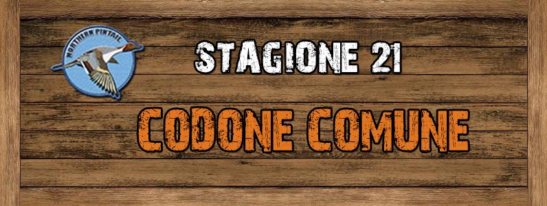 Codone Comune - ST. 21 Codone_comune