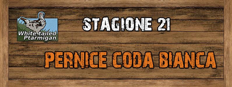 Pernice Coda Bianca - ST. 21 Pernice_coda_bianca