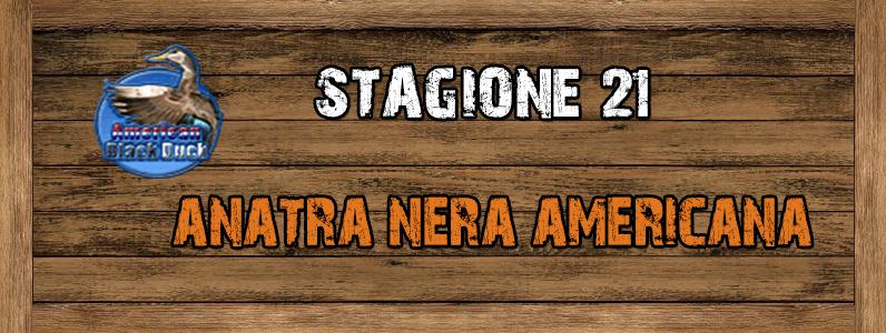 Anatra Nera Americana - ST. 21 Anatra_nera_americana