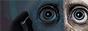 Beyond the Veil (Confirmación - Afiliación Normal) 88x31