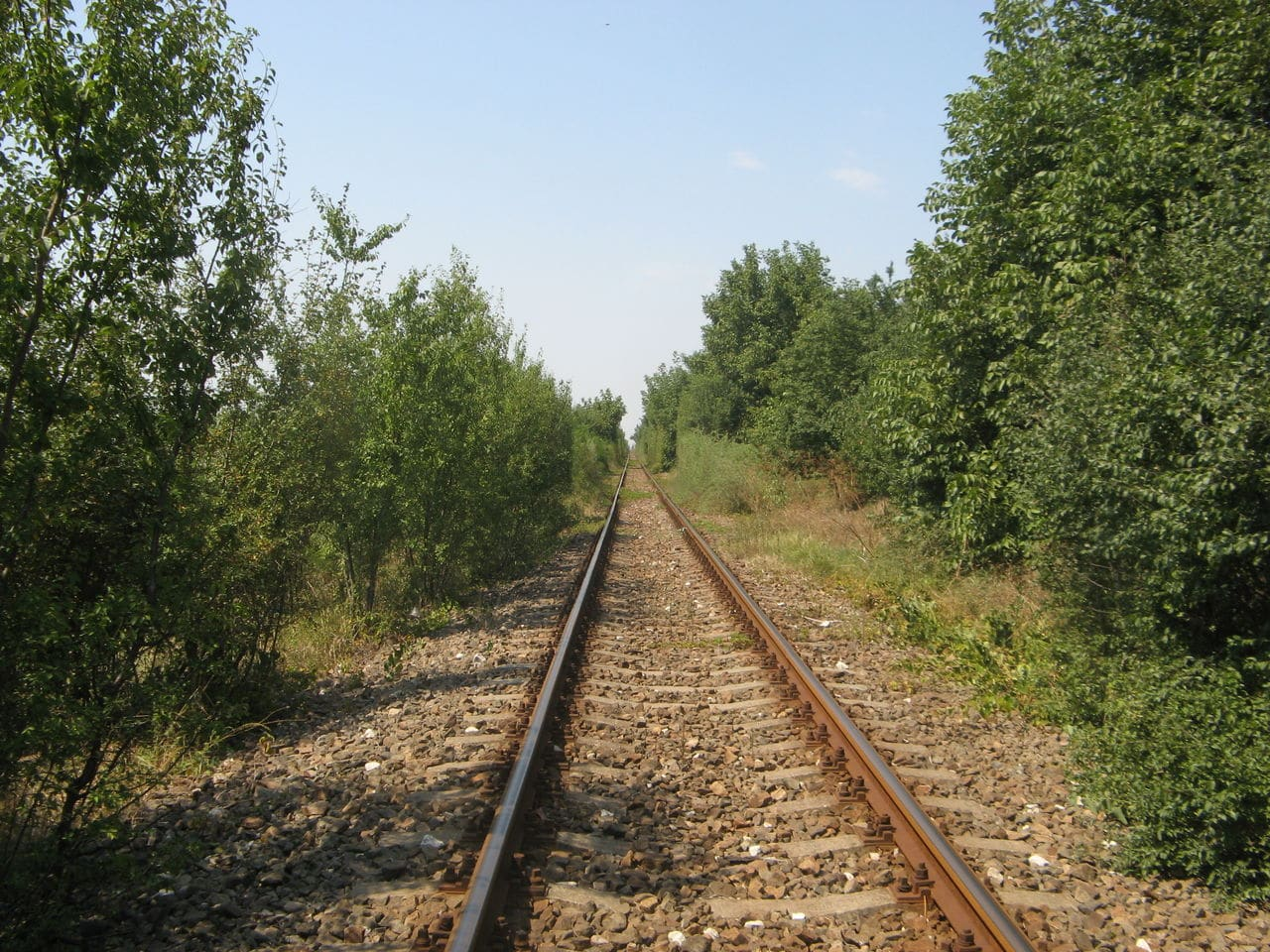 Calea ferată directă Oradea Vest - Episcopia Bihor IMG_0067