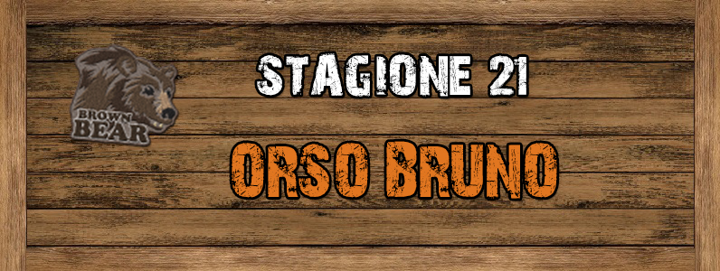 Orso Bruno - ST. 21 ORSO_BRUNO