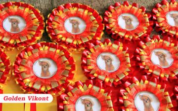 Наградные розетки на заказ от Golden Vikont - Страница 7 Go51D