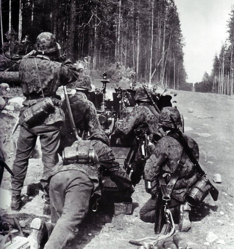 "6 дивизия СС ""Норд"" 1554806_original"
