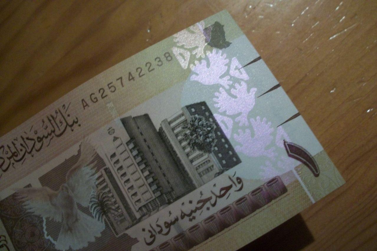 1 Pound Sudan, 2006 100_7343