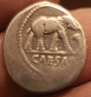Denario de Julio Cesar. CAESAR - Elefante. DSC00029