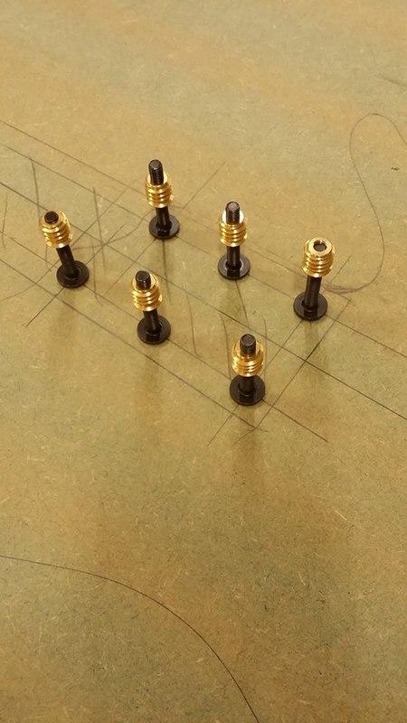 Construção caseira (amadora)- Bass Single cut 5 strings - Página 4 12285674_10153788184569874_1069311623_n