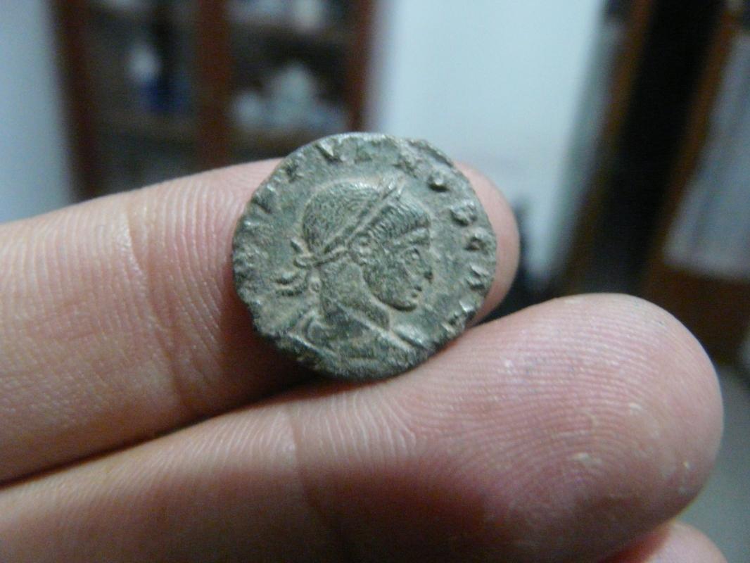 Nummus de Crispo P1750287