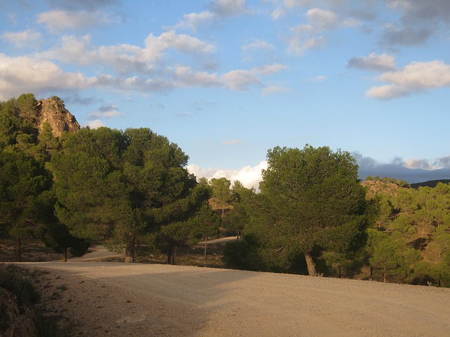 EL RECONCO,Biar + COVA NEGRA (ruta motosenderista) Biar34