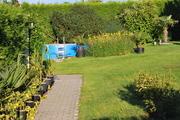 Léto na zahradě - Stránka 3 DSC_0019