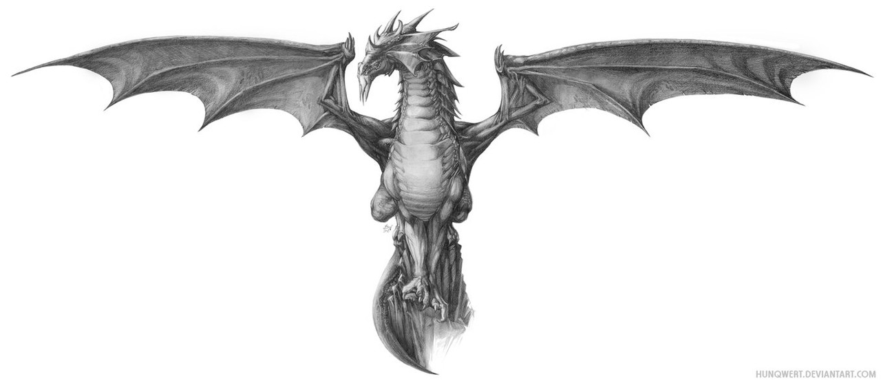Guess Who? Grey_Dragon