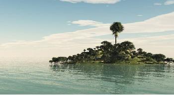 Aquarismo: Como as regras basicas de fotografia podem nos ajudar??? Sem_t_tulo33
