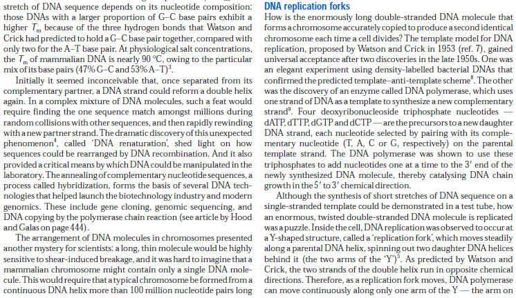 DNA replication of prokaryotes - Page 2 DNA_replication_and_recombination12