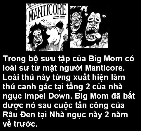 [Grand Line News] Tìm hiểu sâu One Piece Chapter 847 6