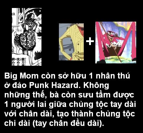 [Grand Line News] Tìm hiểu sâu One Piece Chapter 847 9