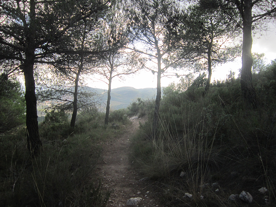 EL RECONCO,Biar + COVA NEGRA (ruta motosenderista) Biar29