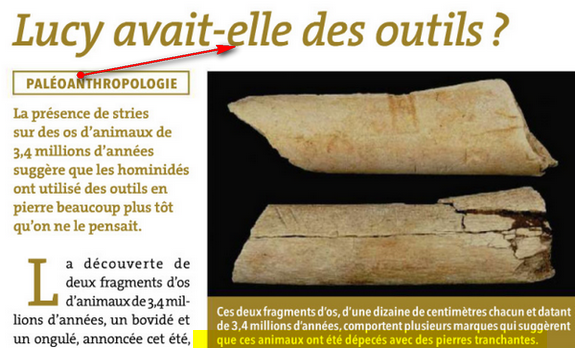 fausses fossiles qui ont dupé les experts :mensoge évolution+ Lucy1