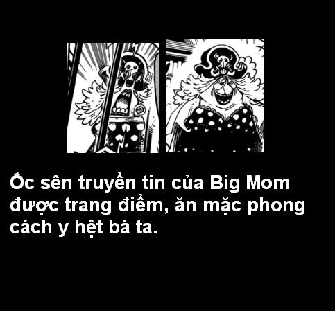 [Grand Line News] Tìm hiểu sâu One Piece Chapter 847 13