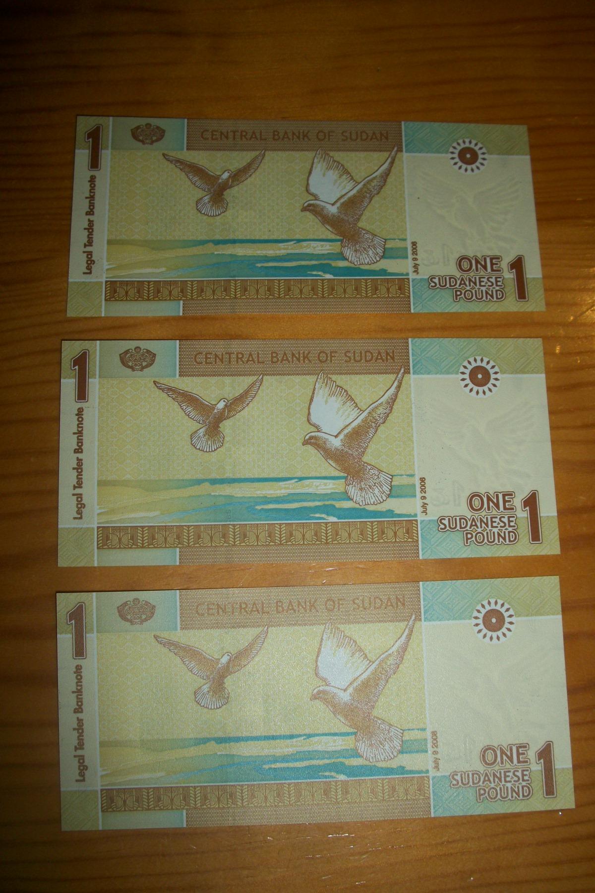 1 Pound Sudan, 2006 100_7339