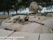 "Советский основной боевой танк Т-55 ""Enigma"",  501e Regiment de Chars de Combat, Mourmelon-le-Grand, France T_55_Enigma_Mourmelon_061"