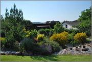 Léto na zahradě DSC_0111