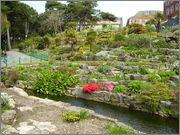 rostliny v Anglii - inspirace P4190055