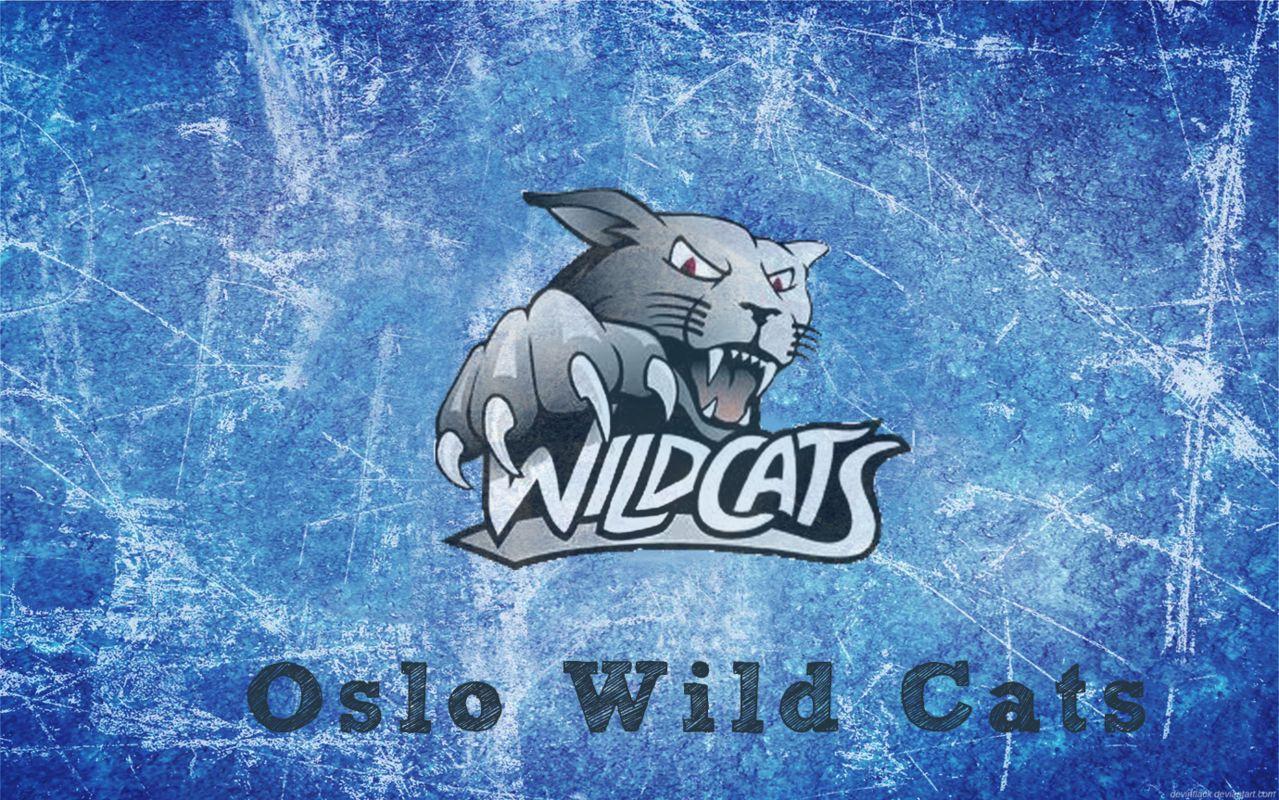 Snickera Darbnīca ;D Wild_Cats_WP