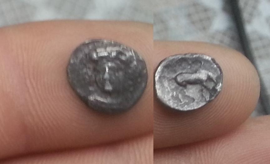 Óbolo eginético. Larissa (Tesalia) 395-344 a.C. Image