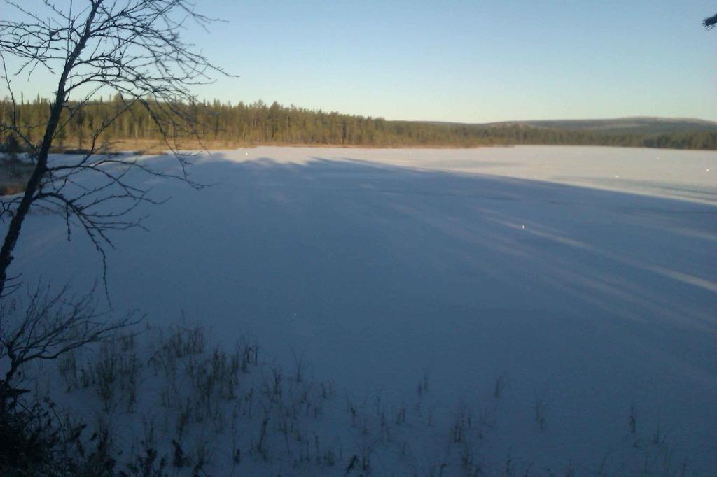 Зимний пейзаж IMAG0642