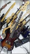Fender Precision MIJ 1994 - Verdadeiro ou Falso? 10904190_1421458621478317_812940203_n