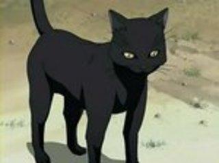 [HG] Catch my Cat! [D] Yoruichi_cat_bleach_anime_hangout_11370188_400_3