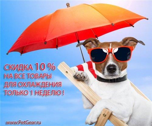 Интернет-зоомагазин Pet Gear - Страница 9 626005c53a45