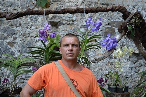 Выставка орхидей Никитского ботанического сада 0c2cb61644f5